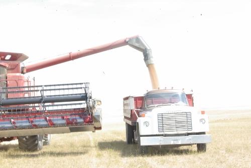 grain-truck